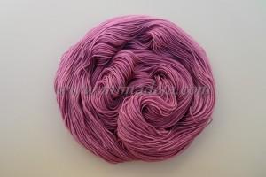 Rosa uva II