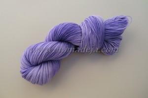 Rose violet 1