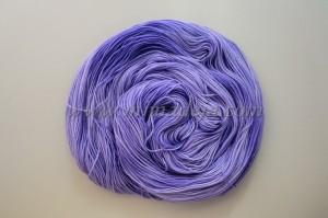 Rose violet 2